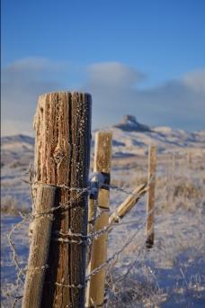 winter-2016-9.jpg